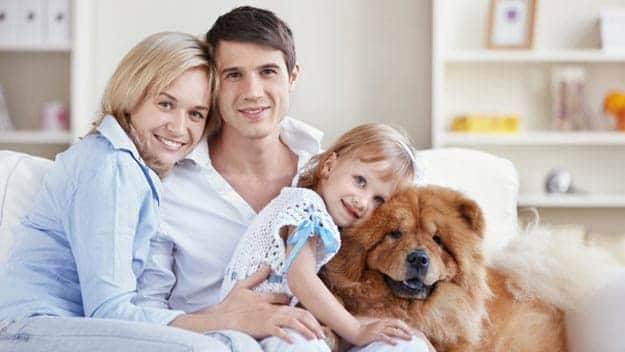 Wills & Trusts dog-young-family Direct Wills Buttermere